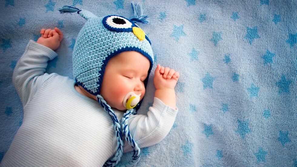 VANLIG SPØRSMÅL: – Så skjønn! Er han snill? Foto: NTB scanpix/Shutterstock