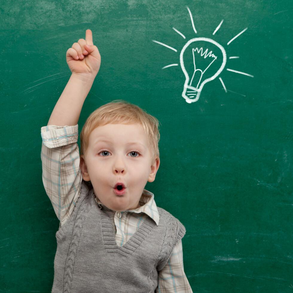 EVNERIK ELLER SKOLEFLINK? At et barn er evnerikt betyr ganske enkelt at det har høy IQ.  Foto: NTB Scanpix