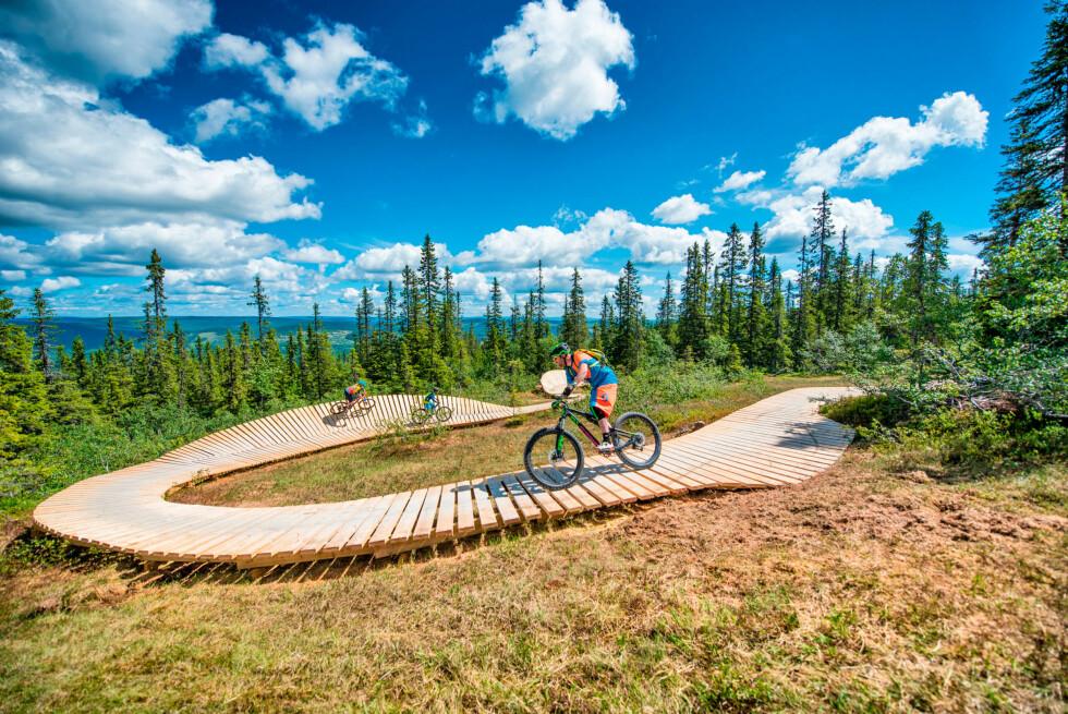 <strong>FLYTSTI:</strong> Ta heisen opp i naturskjønne omgivelser, sykle ned igjen.  Foto: Hans Martin Nysæter / Destinasjon Trysil
