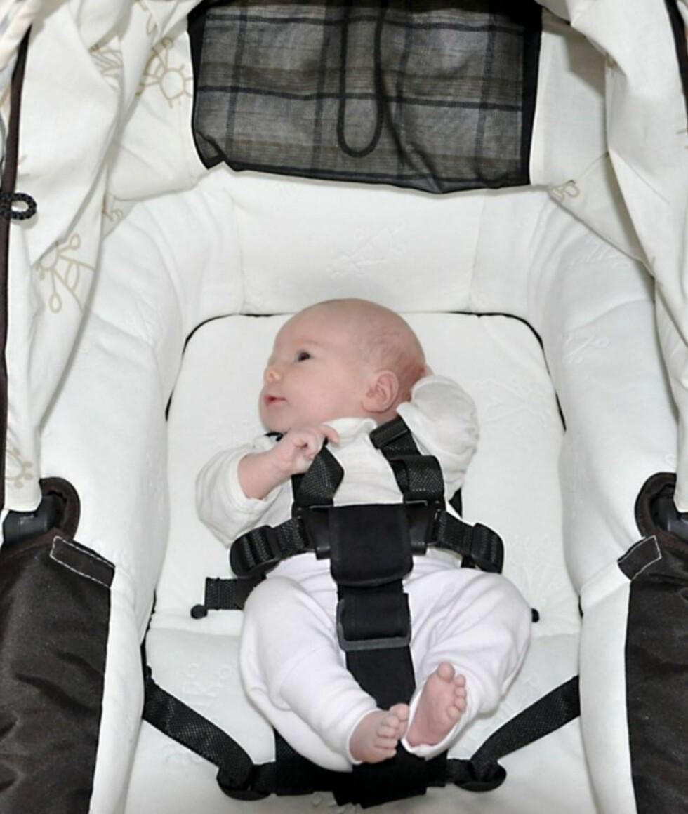 SOVESELE VOGN: Dersom du venner babyen til å sove med sele på tidlig, vil det bli lettere når den blir eldre og setter seg opp på egenhånd.  Foto: Produsenten