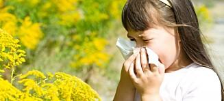 Har barnet allergi eller forkjølelse?