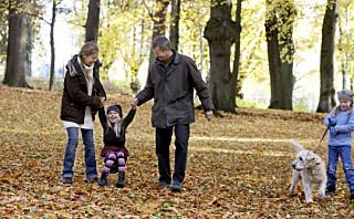 9 ting å finne på med barn i helga