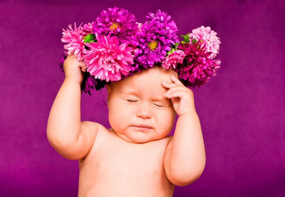SOMMER OG BLOMSTER: Lar du deg inspirere, finner du kanskje favorittnavnet her. Foto: Shutterstock.com ©