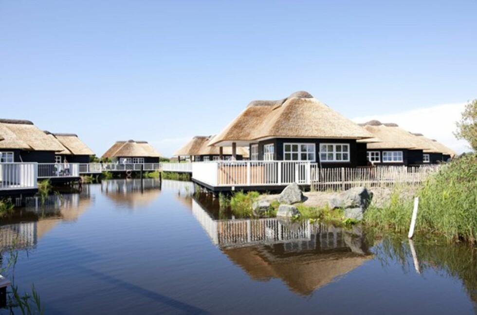 """LUKSUSHYTTER: """"Fiskerhusene"""" er kåret til Europas beste. Foto: Hvidbjerg Strand"""