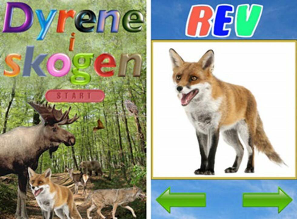 Dyrene i skogen: Appen som gir deg svaret på hva reven sier! Foto: iTunes
