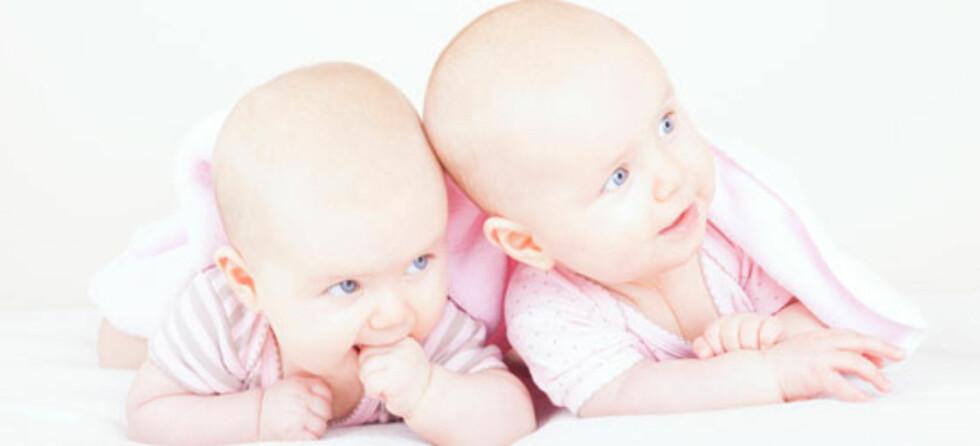 Eneggede tvillinger - alltid med samme kjønn og blodtype. Foto: Shutterstock.com ©