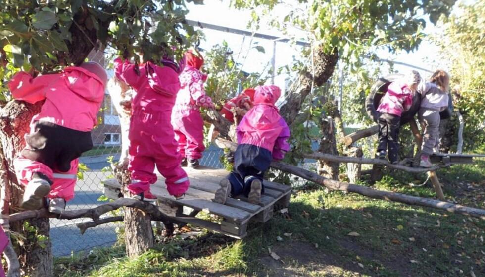 HINDERLØYPE: Et av de mest populære innslagene i barnehagen, er hinderløypen barna selv har bygget - og som blir litt lengre for hver eneste dag. Foto: Privat
