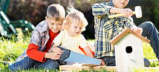 Lar treåringene få bruke sag og øks i barnehagen!