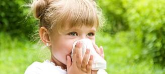 Så tidlig kan barnet utvikle pollenallergi
