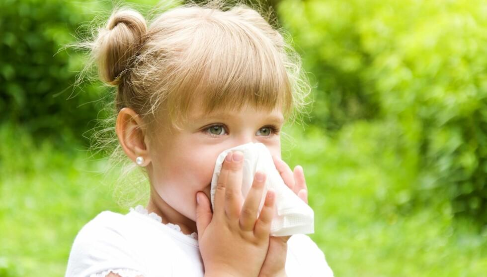 POLLENALLERGI HOS BARN: Hvor tidlig kan man egentlig se de første symptomene? Foto: anna.danilkova / Shutterstock / NTB scanpix
