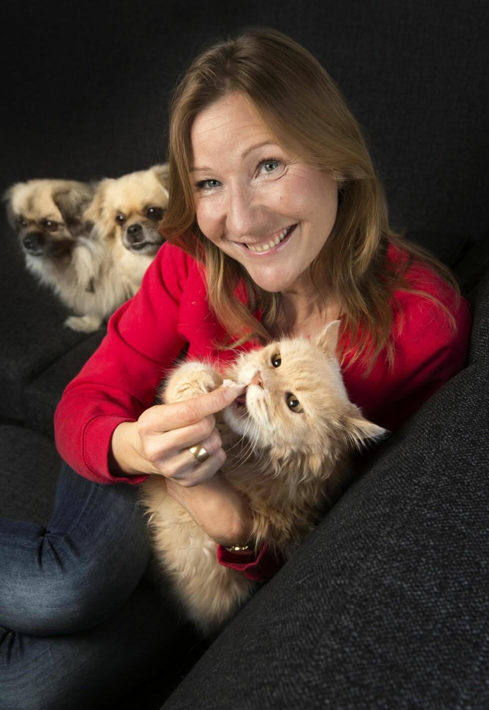 HJEMMEKOS: Petter VI legger seg ofte i fanget til Renate.  – Hundene Wanda og Camaro kommer godt overens med Petter VI, sier matmor Renate. Foto: Sverre Chr. Jarild