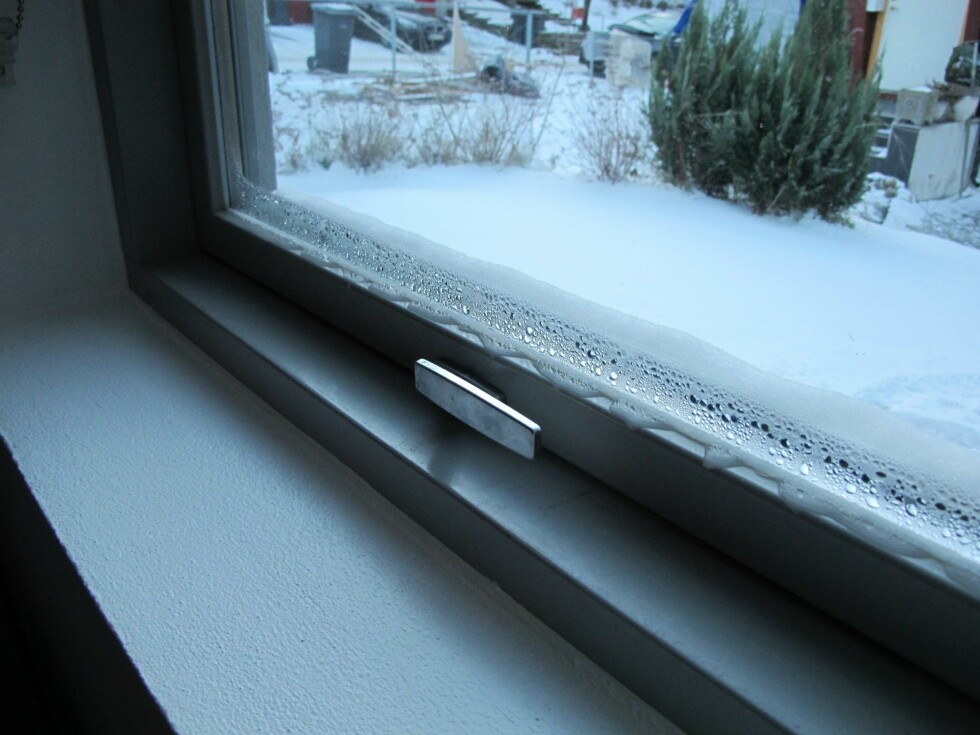 DÅRLIG UTLUFTING: Kondens på vinduer kan føre til mugg. Ha gjennomtrekk i boligen i cirka fem minutter og bytt ut gammel luft.  Foto: Mycoteam
