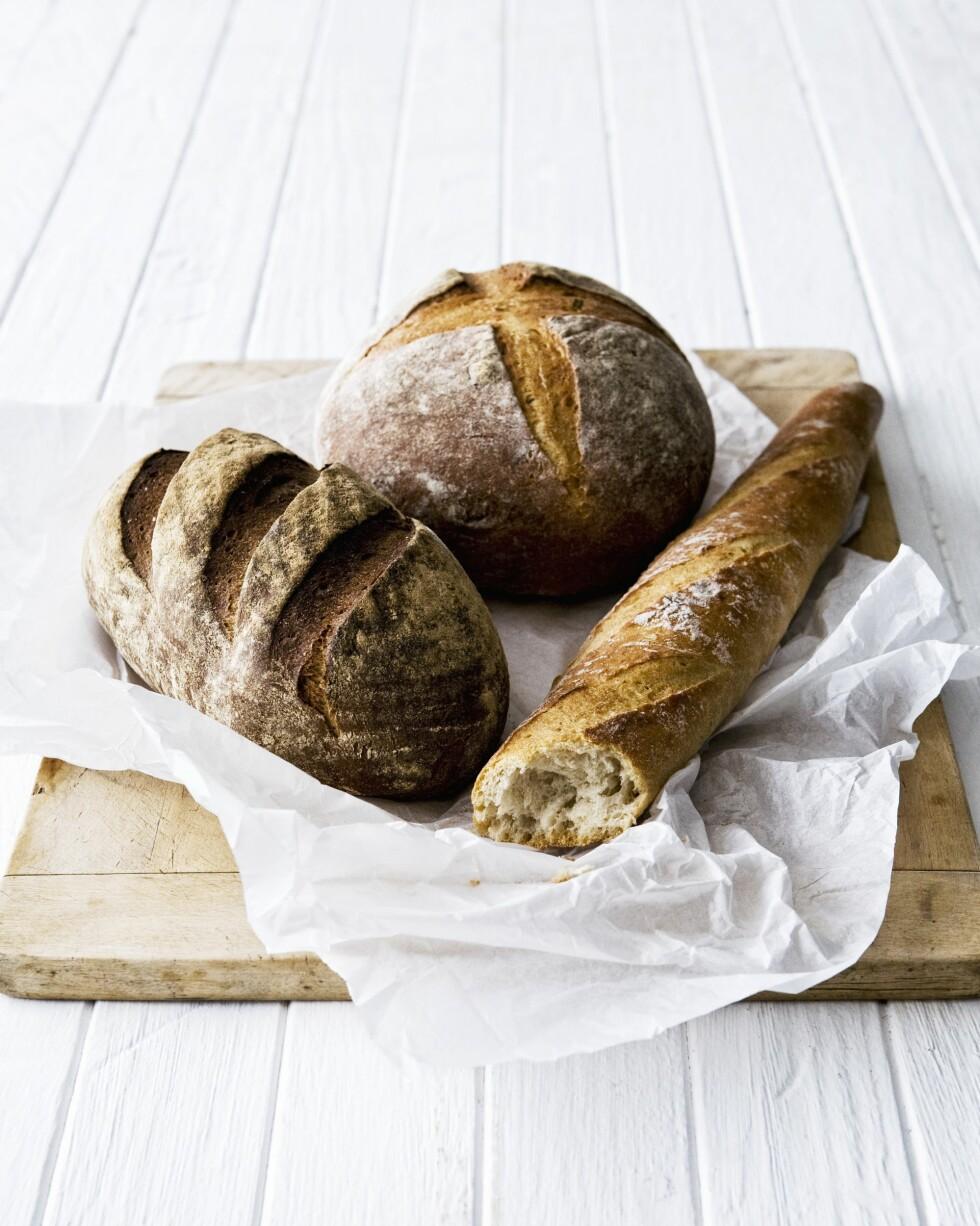 INNEHOLDER GLUTEN: Gluten finnes i hvete, rug, bygg, havre, triticale (hybrid mellom hvete og rug) og spelt, ifølge Norsk Helseinformatikk (NHI.no). Foto: Scanpix