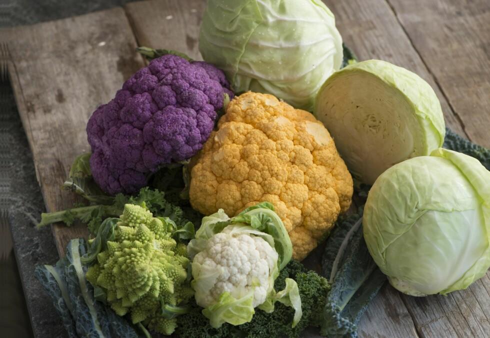 <strong>HOLDER DEG FRISK:</strong> Kål er en grønnsak med mye vitamin C, samt karotenoider, fenoler og glukosinolater som ansees for å være helsefremmende.  For eksempel er brokkoli rik på vitamin C, og også en kilde til vitamln K, B-vitaminer folat og kostfiber. Foto: Fredrik Sanberd/TT/Scanpix