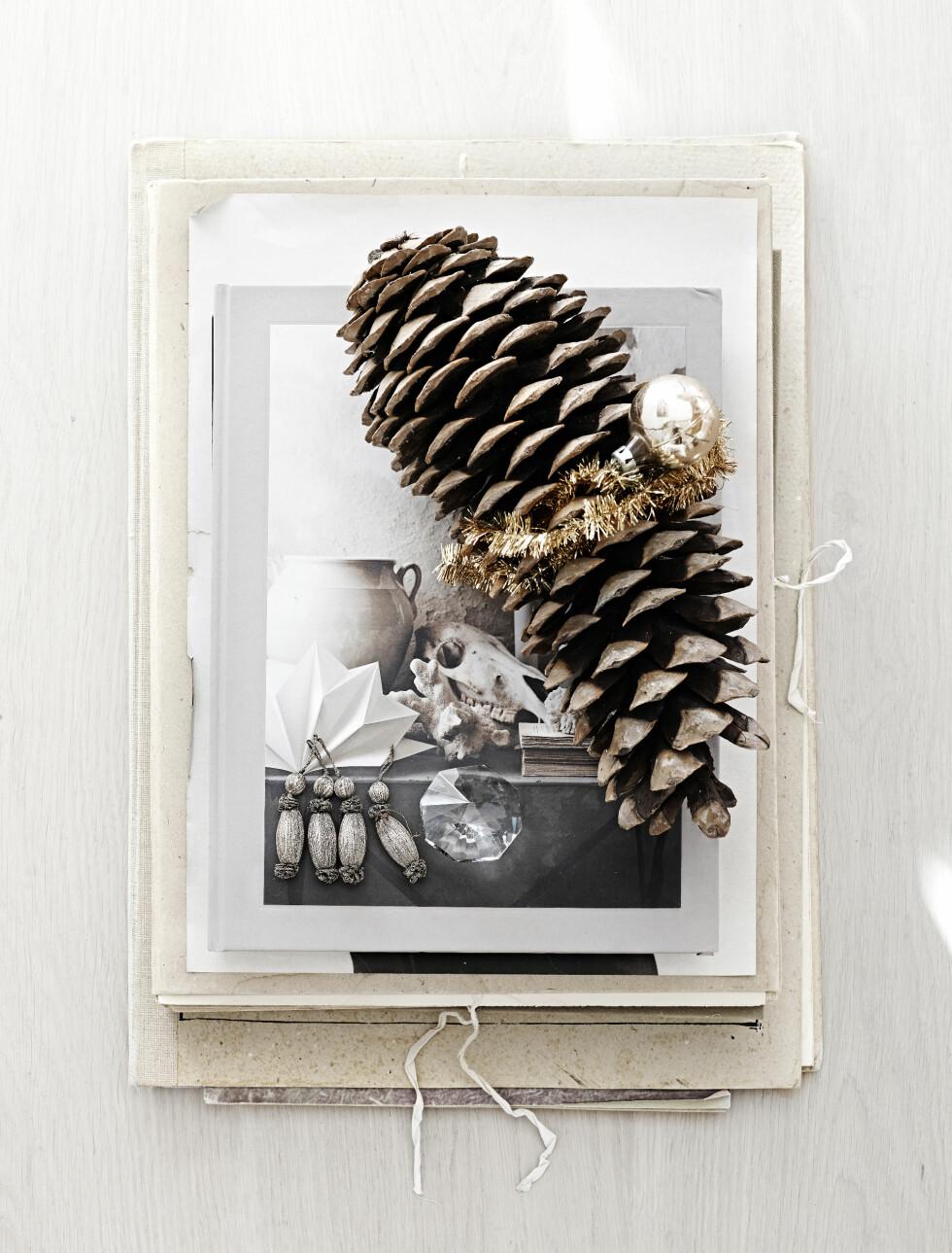PYNT MED KONGLE: Flere av Malins enkle, små stilleben har fått et hint av jul.  Foto: Sara Svenningrud