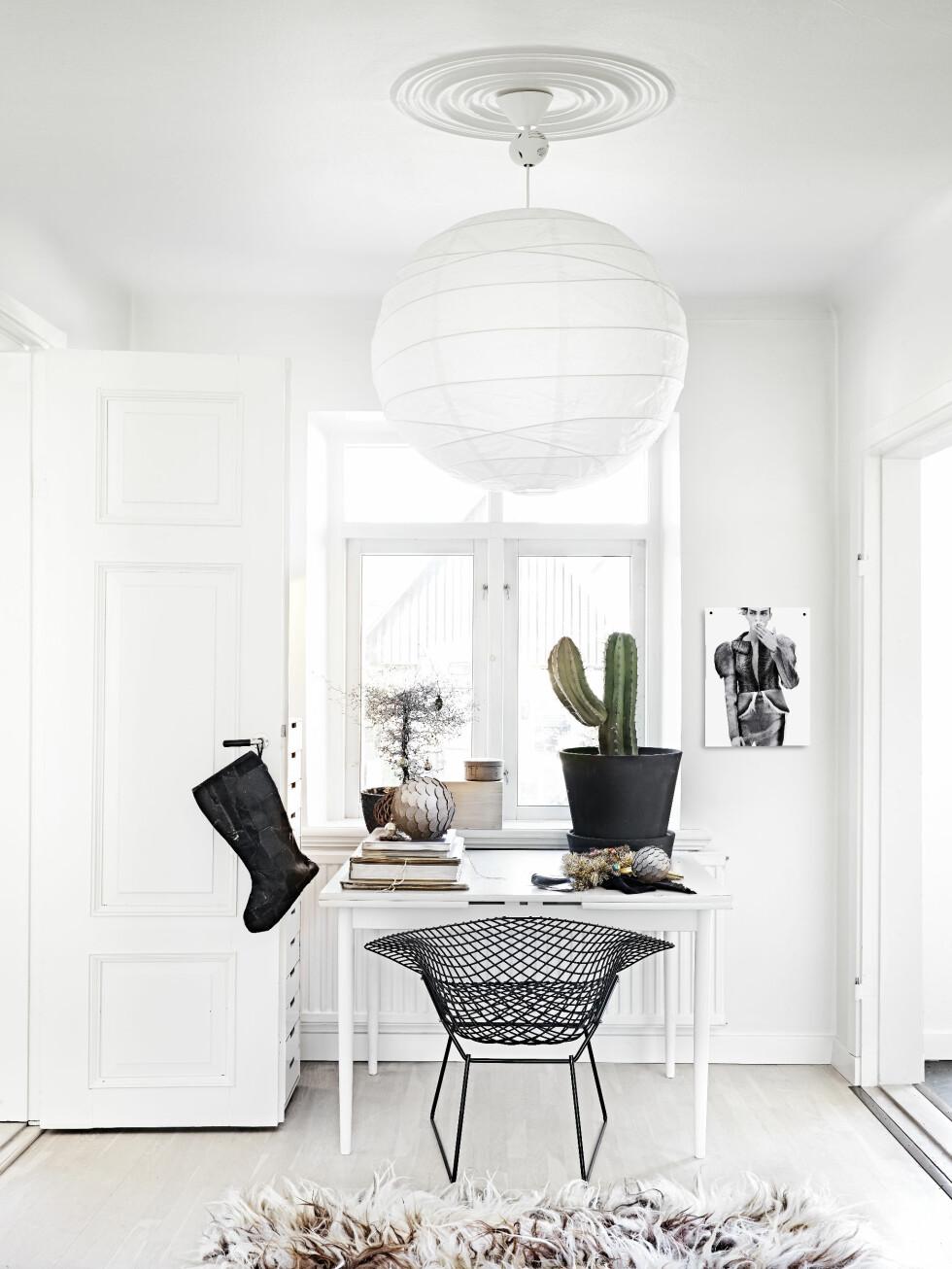 RUND TAKLAMPE: Taklampen er fra Habitat, men det finnes lignende på både Ikea og Granit. Stolen er Bertoia Wire Chair.  Foto: Sara Svenningrud