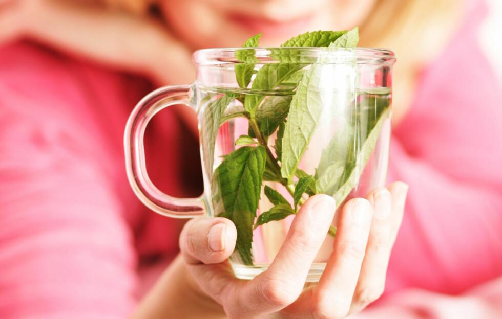 DRIKK GRØNN TE: Grønn te inneholder et stoff som har vist seg å kunne redusere fettopptaket i kroppen.  Foto: Peter Atkins - Fotolia
