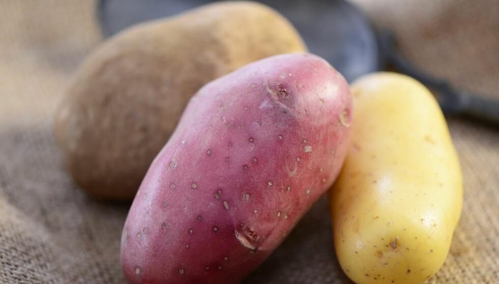 Disse potetene passer best til ribbe og pinnekjøtt