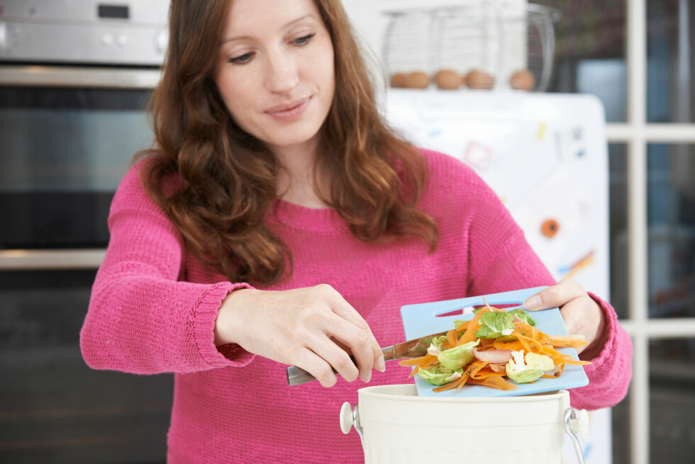 RESTEMAT: Ifølge Kringlebotn kan du spise mange matvarer som har gått ut på dato. I tillegg må vi bli flinkere til å bruke restene av maten.  Foto: Shutterstock / SpeedKingz