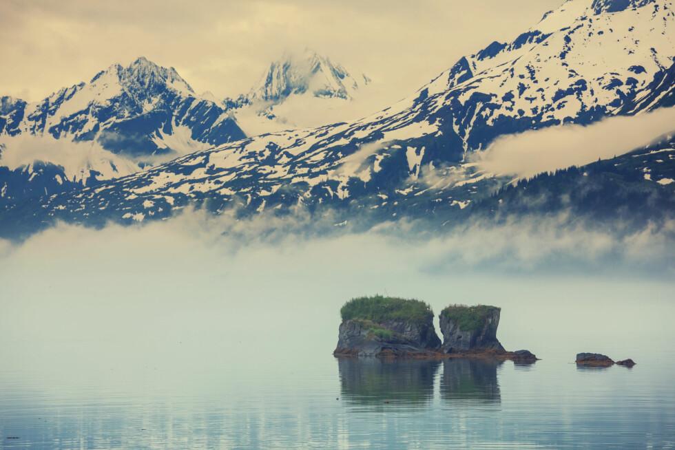 TUNDRAEN I ALASKA: Klimaforandringene kommer til å sette sine spor på dette fantastiske stedet. Foto: Shutterstock / Galyna Andrushko