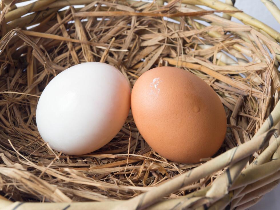 INGEN FORSKJELL: Eksperten forteller at det ikke er annet enn fargen som skiller de brune og hvite eggene. Ernæringsmessig er de helt like.  Foto: Shutterstock / Monrudee