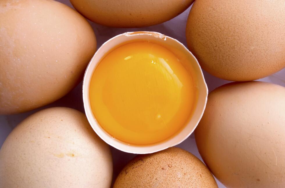 EGGEPLOMMEN: Svihus forteller at kolesterolet fra eggeplommen ikke kan assosieres med hjerte- og karsykdommer.  Foto: Shutterstock / Gayvoronskaya_Yana