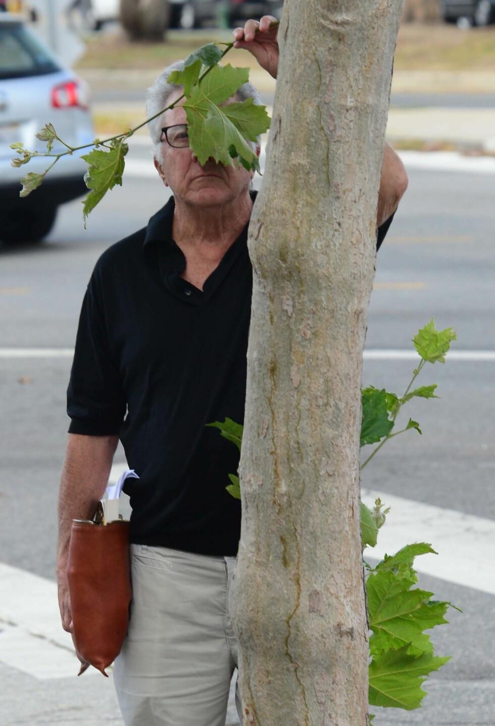 MORSOM TYPE: Vi elsker Dustin Hoffman som «gjør alt han kan» for å gjemme seg fra paparazziene. Foto: Splash News