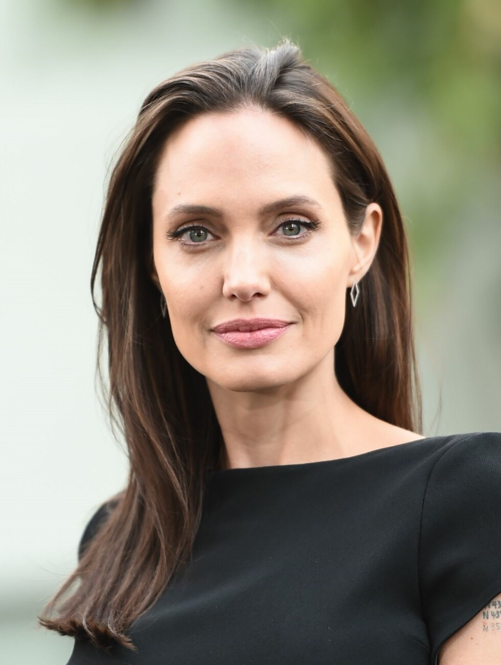 ANGELINA JOLIE: Disse fantastiske øynene passer perfekt til hårfargene Jolie har her. Foto: Rex Features