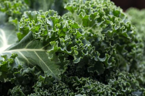 GOD KILDE: Grønnkål er en god kilde til vitamin A.