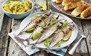 #Fisketirsdag: Grillet makrell