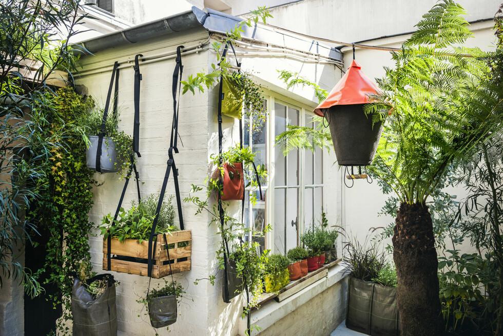 SMART PÅ STANG: Med lite plass er det smart å bruke veggen. Monterer du opp en lang stang, kan du henge krukker og kasser fra den, og du slipper masse hull i veggen. Plantene vil kose seg i varmen fra solveggen. Klatreplanter som slanger seg opp langs en stropp, gir et eksotisk preg. Kule hengekasser og -poser fra Bacsac (fra kr 300, designdelicatessen.no).   Foto: Krista Elvheim