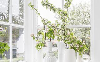 Skap vårstemning inne med hagens eplegreiner