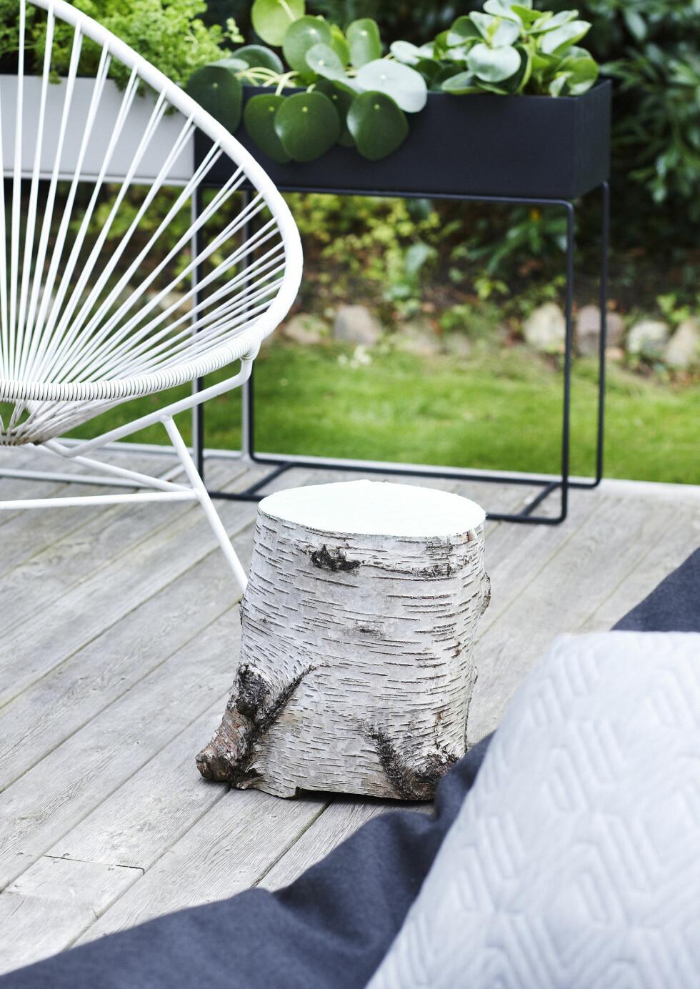 EKTE NATUR: En trestubbe er et herlig møbel på terrassen! Og ikke minst er den jo enkel å «lage», hvis du finner materialet i skogen selv. Du kan beholde den som den er, eller male overflaten etter at den er tørket. Da har du en fotskammel, et bord eller en krakk til en ekstra gjest (dem blir det jo mange av igjennom sommeren).  Foto: Mette Wotkjær