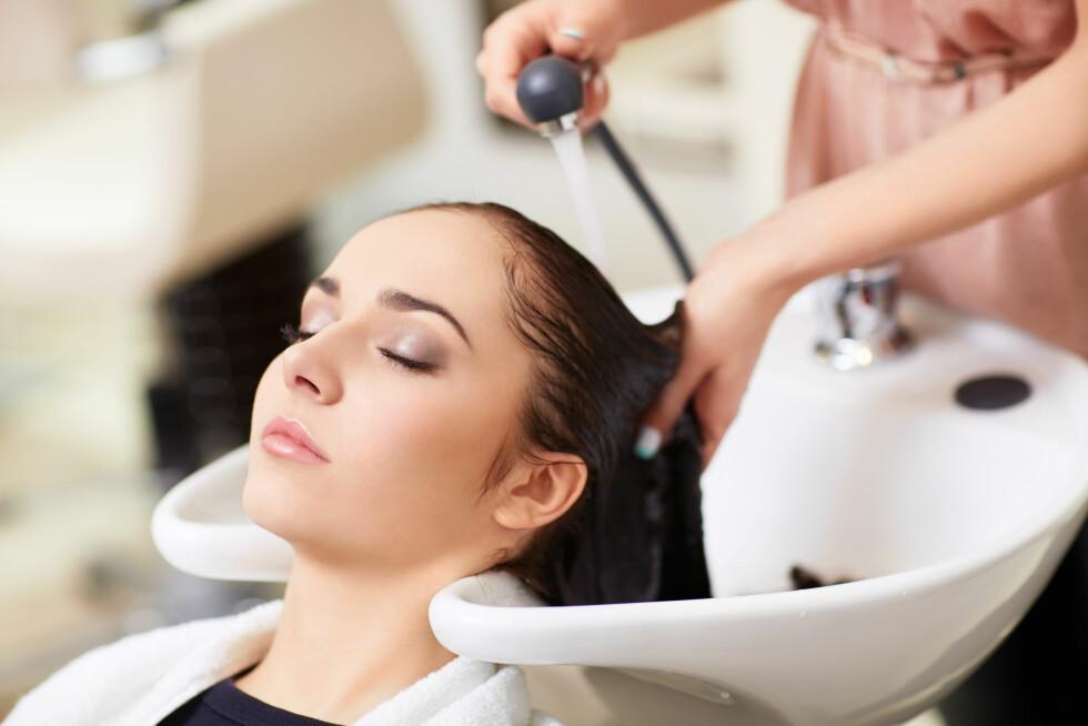 <strong>SKYLL GODT:</strong> Legg merke til hvor grundig frisøren skyller håret ditt etter siste sjamponering neste gang du er i frisørstolen. Foto: Shutterstock / LuckyImages