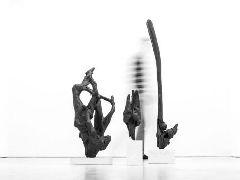"""BRUKER NATUREN: Installasjonen """"Loen"""". Foto: Kneip"""