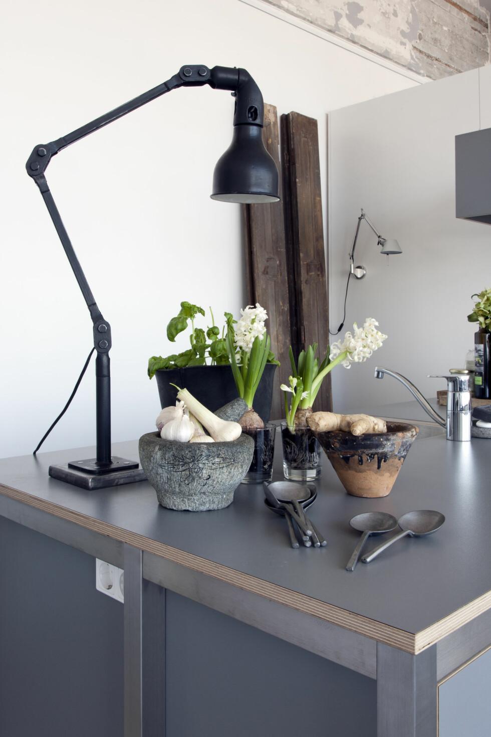 SVARTMALT: Den gamle industrilampen malte Renee svart. Det samme med terrakottapotten. Foto: Raul Candales Franch/IDECORimages.com