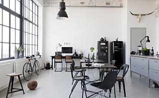 Forvandlet fabrikk til råkul leilighet