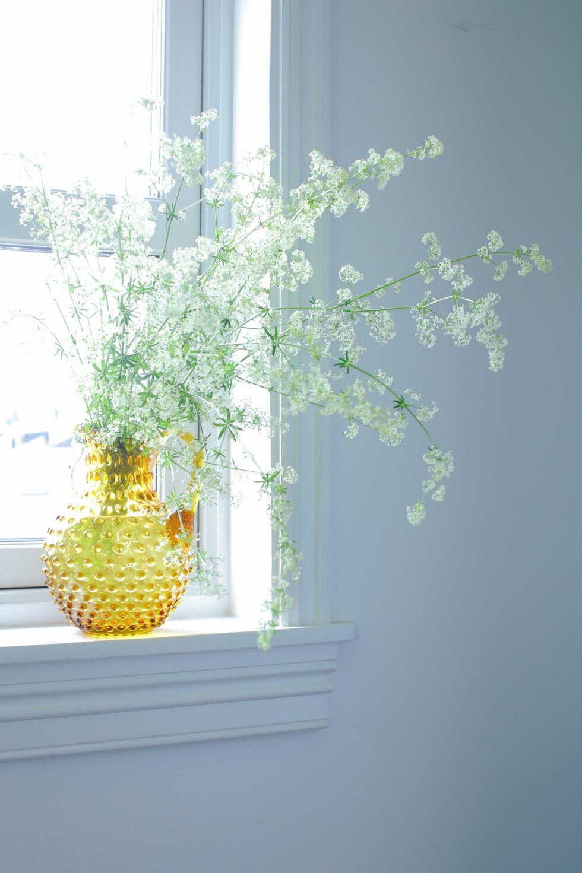 INSTANT SOMMER: Finnes det en mer energisk farge enn gult? Sammen med en sky av brudeslør kommer sommeren på et blunk. Foto: Jeanette Lunde