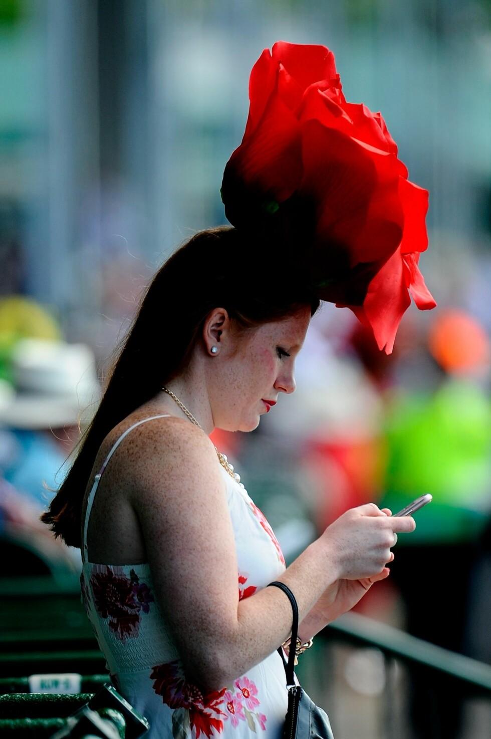Kentucky Derby Foto: Afp