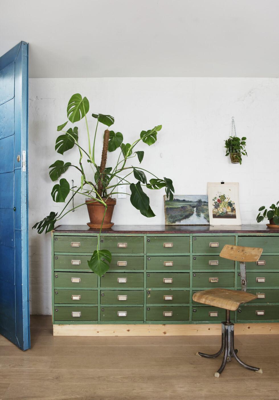 GAMLE MØBLER: Kjøpmannsdisken som står mellom kjøkkenet og stuen er funnet hos en låsesmed i Tønsberg. Stolen er en fransk industriarbeidsstol. Foto: Yvonne Wilhelmsen