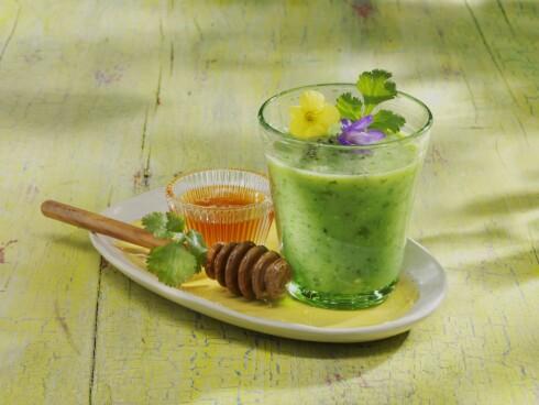 KOMBUCHA: Her ser du en smoothie med agurk, kiwi, kombucha og honning. Kombucha er en blanding av te, sukker og bakterier - som sies å ha en rekke helsefordeler.  Foto: FoodCollection