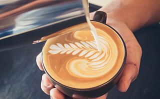 Caffé latte, cappuccino og cortado - hva er egentlig forskjellen?