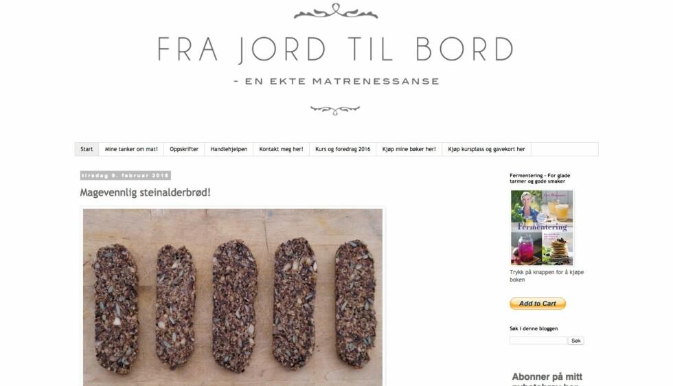 MATBLOGG: Helle Bornstein er fan av Gry Hammer, som blant annet deler oppskrifter på fermentert/melkesyregjæret matretter med sine lesere.  Foto: Skjermdump/http://gryhammer.blogspot.no