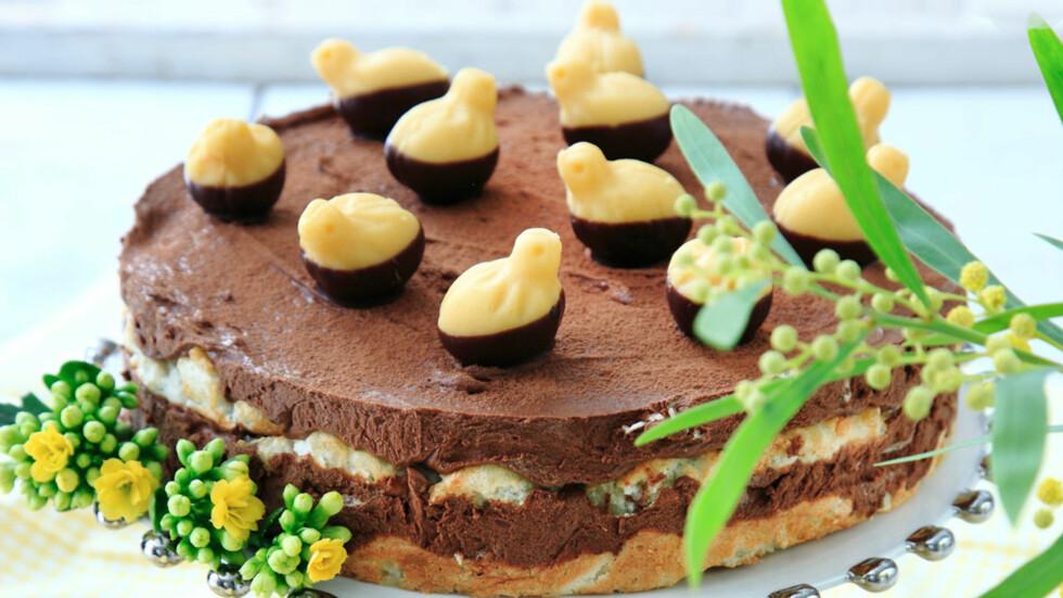 PÅSKEKAKE: Har du lyst til å bake en kake til familien i påsken? Her får du oppskriften på 5 smakfulle påskekaker. FOTO: NTB Scanpix