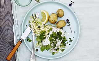 #Fisketirsdag: Bakt torsk med dampet spisskål og koriander