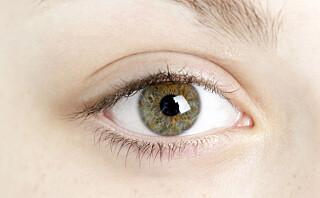 PC, mobil, nettbrett: slik påvirker det synet ditt