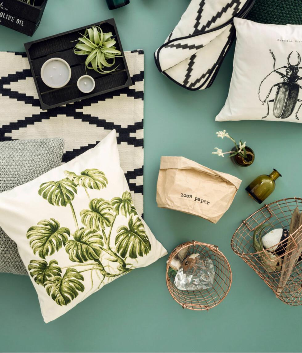 Grønne detaljer kombinert med kobber og sort/hvitt er lekkert. Invester i små planter som pynter opp hjemmet! Foto: H&M