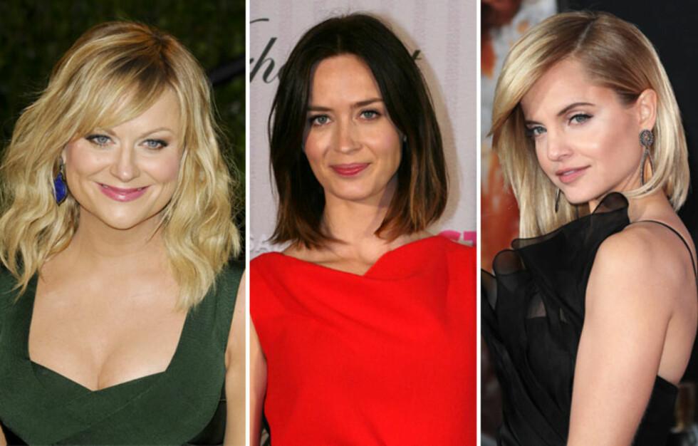 RIKTIGE VALG: Her har Amy Poehler, Emily Blunt og Mena Suvari tatt frisyregrep som gjør at de ser yngre ut. Se hva de gjorde feil før og hva de har lært lenger ned i saken.  Foto: All Over Press