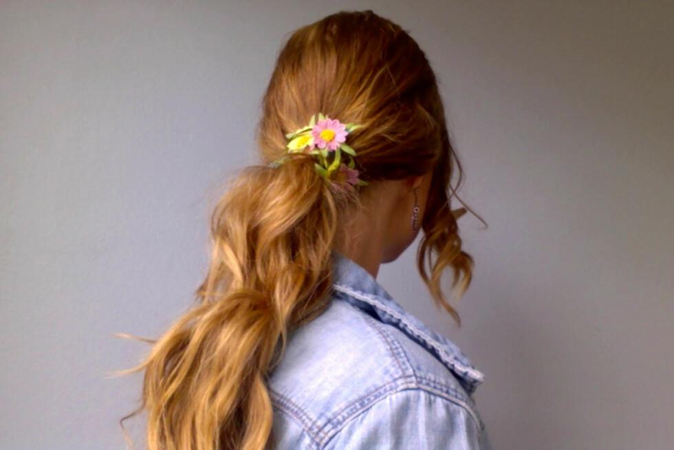 HEIT HESTEHALE: Fest hestehalen der du vil ha den og surr hårbåndet rundt strikken. Vips har du en festfin hestehale uten mer et et par minutters innsats.  Foto: Aina Kristiansen