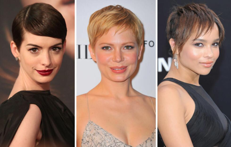 KORT OG GODT: Anne Hathaway (f.v.), Michelle Williams og Zoe Kravitz beviser at man slettes ikke trenger lange lokker for å se både feminin og sexy ut.  Foto: All Over Press